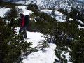 """Nach der Fotosession und ausgiebigen Gipfelrast stapften wir das """"extrem tief""""  ausgetretene Plateau wieder retour. Nun stand """"Schneeschuhsuchen"""" auf dem Programm. Aber auch diese fanden wir problemlos wieder und es ging über den gleichen Weg talwärts."""
