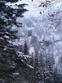 Ringsherum konnte ich immer die tolle Winterlandschaft in vollen Zügen genießen.