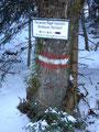 Zehn Minuten vorm Gipfel musste ich den Wandersteig Nr. 32 verlassen und auf Wandersteig Nr. 10 wechseln.