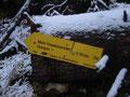 Die nächste Weggabelung. Rechts führte der Weg Nr. 299 weiter zur Dümler Hütte. Ich nahm aber den Weg Nr. 292 weiter dem Gipfel des Seespitz folgend. Weitere 1,5 Std wurde vorausgesagt.