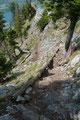… unzählig angelegte Holztreppen in den verschiedensten Ausführungen …