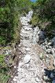 Mitunter mussten auch so steinige steilere Felsrinnen überwunden werden, wo die Hände oft auch ein wenig von Nutzen sein konnten. Eine gelungene Abwechslung eben!
