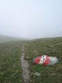 ... gings die ersten Meter vom Gipfel auf Wanderweg Nr.690 zurück bevor dieser wieder zu Wanderweg Nr.691 wurde.