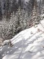 """Zurück durchs """"Winterwonderland"""" ..."""