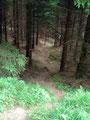 ... und schon befanden wir uns auf den letzten Metern unserer heutigen Bergtour.