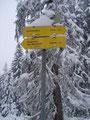 An dieser Stelle mündete der Weg Nr. 651 aus Selzthal ein. Ab diesem Zeitpunkt mußten wir lediglich den bereits vorhandenen Spuren folgen. Laut Wegweiser trennten uns nur noch 20 Min. vom Gipfelsieg.