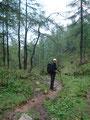 ... durch nasses, feuchtes und sehr sehr rutschiges Gelände.