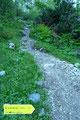Der nächste aufschlussreiche Wegweiser zeigte nach links dem Normalweg Richtung Gr. Donnerkogel entlang. Den Hauptweg des Austriaweges sozusagen links liegen gelassen verlies ich auch den Almboden und …