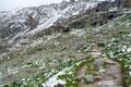 … uns steiler angelegte und weite Kehren durch die Westflanke Richtung Hütte empor brachten. 2650m zeigte meine Suunto … es wurde zunehmend weißer.