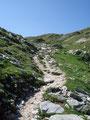 Weiter folgte ich den nunmehr steiniger werdenden Weg, …