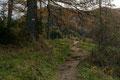 Durch wundervoll verfärbte Lärchenwälder, stetig moderat ansteigend brachte uns der bezifferte AV-Weg Nr. 16, 17, 28, schlussendlich …