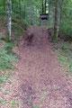 Bereits wenige Schritte später betraten meine Füße jedoch schon wieder einen breiten Waldweg, …