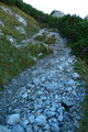 … teilweise loses Gestein weiter zum Trenchtling empor. Übrigens der Trenchtling ist ein Gebirgsstock mit verschiedenen Erhöhungen, wie Hochturm (2081m) seiner höchsten Erhebung.