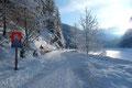 In einem gemächlichen Tempo folgte unser Team, bestehend aus Gabi, Margit, Angela, Gudrun, Fred, Joachim, Roni & meiner Wenigkeit der schneebedeckten breiten Straße …