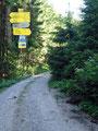 Hier an dieser Stelle teilte sich der Weg: Links direkt zur Ennstaler Hütte und rechts über die Hochscheibe. Sabine und ich entschieden uns für den direkten Weg.