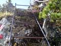 Das erste Kriterium dieser Bergtour. Wahnsinn, eine 3 m hohe Leiter galt es zu überwinden!!!