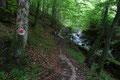 Mit seinen Kaskaden, seinen kleinen Tümpel und den Wasserfällen bestach der brodelnde Rosittenbach, dessen Bachbett sich parallel zu unserem Aufstiegsweg talwärts schlängelte.