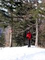 Die restlichen Meter ging es wieder in Serpentinen den Waldhang hinunter ...