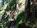 """Gleich zu Beginn unserer """"Bergwanderer Karriere"""" stand einer der schönsten Aussichtsgipfel auf unserem Plan, nämlich der """"Schoberstein"""". Einem gut markierten, in steilen Serpentinen angelegten Steig nach oben folgend ..."""