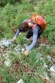 Das geschickte zu Hilfe nehmen der Hände erleichterte das Überwinden von kleineren Felsaufschwüngen enorm.