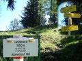 """… zum 1500m hoch gelegenen Landlereck. Die Tieflimauer und der Kl. Buchstein wären über den Steig nach links zu ersteigen, unser Weg führte aber weiter nach rechts zur Ennstaler Hütte (10 Min.) und den """"Tamischen Turm""""."""