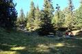 Der Wegverlauf präsentierte sich als überaus gut angelegt. Mal führte er über Wiesenflächen, mal über  mit Handlauf versehene Holztreppen, …