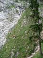 Auch diese Passage gemeistert, blickte ich zurück auf die nachfolgenden Bergwanderer. Hier kam die Steilheit des Geländes erst richtig zur Geltung!