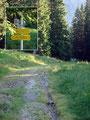 … zu einer Forststraße. Dieser folgte ich wenige Meter bis zum Kalblingsgatterl (1542m) und der nächsten Weggabelung.