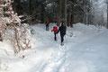Somit wechselte zu unseren Gunsten die Spurarbeit neuerlich. Kräfteschonender spazierten (etwas übertrieben!) wir den Schispuren folgend um die Rechtskehre und gleich darauf links abbiegend in den Wald hinein.