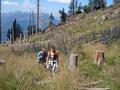 Weiter führt uns der Weg über eine kahle Wiesenfläche Richtung Gipfel weiter.