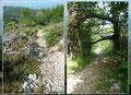 Noch immer irgendwie das Reptil im Nacken (Kopf!) setzte ich meinen Abstieg über Gestein und Geröll Richtung der kleinen Ortschaft Mala Ucka fort.