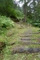 … so folgten wir den etwas ansteilenden 921er Steig in kurzen Kehren über unzählige Stufen und Treppen der südlichen Talflanke nach oben.