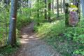 """Nun folgte ich der leicht ansteigenden Forststraße weiter in den Wald hinein. Bei der nächsten Weggabelung musste man sich entscheiden: Zuerst Schober, oder doch den Frauenkopf? Ich drehte links ab, folgte der Beschilderung und dem """"Rudi"""" …"""
