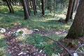 Unterhalb von ca. 1200m war dann ganz Schluss mit Weiß und Grün übernahm wieder die Regentschaft. Wie eine Schlange schlängelte sich das Wandersteiglein hinab.