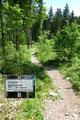 Der Steig führte mich letztendlich auf die Forststraße zurück, wo sich meine heutige Hochstaufen-Rundtour schloss.