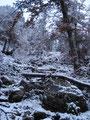 Weiter führte mich der Steig nach oben. Er wurde aber immer steiniger und durch den Schnee auch rutschiger.