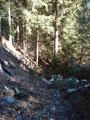 Nach einem ausführlichen Sonnentanken machten wir uns anschließend wieder an den Abstieg. Der unterste Bereich war teilweise schon komplett aper.