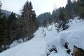 … wir erreichten abermals eine in östliche Richtung bergauf führende Forststraße. Der lichtende Baumbestand in diesem Bereich gab erstmals einen Blick auf die vor uns liegende Bergwelt frei. Nur, welcher war unser heutiges Gipfelziel?