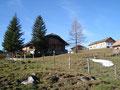 Gestärkt, wanderte ich weiter zur naheliegenden Labenbergalm, wo der nächste Grasgipfel auf mich wartete. Vorbei an den Hütten …