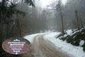 """Ab der Kehre führte uns die gleichmäßig moderat ansteigende """"rot-weiß-rot"""" markierte Straße in vielen weiteren Kurven in Richtung Födinger Alm höher."""