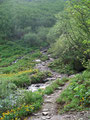 Jetzt aber war Schluss mit gemütlichem wandern. Der Steig steilte an und es ging in Serpentinen über, durch die vielen Rinnsal nassen Steinen aufwärts.