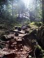 Nun flachte der Wandersteig ab und brachte uns auf einer Art Plateau den Felswänden des Sparbers immer näher.
