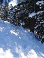 Auch diesen mit Bravour gemeistert und schon erreichte ich wieder den Utensilienparkplatz. Die Schneeschuhe wurden wieder angeschnallt, es ging von nun an bergab.