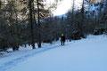 Ich konnte es wahrlich nicht glauben, sah mich immer wieder um. Nicht eine einzige Spur war im Schnee ausfindig zu machen. Wir waren völlig alleine unterwegs. In weit angelegten Kehren … und …