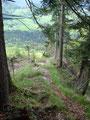 ... erreichten wir wieder das saftige Grün entlang des Planergrabens.