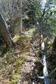 … schlängelte sich einen Waldrücken weiter aufwärts.