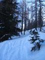 ... hies es fortan, steiler nach oben und sehr viel mehr an Schnee. Hätte man keine Skispur gehabt zum hochwandern, es wäre kaum möglich gewesen durch die Mengen an Schnee zu kommen.