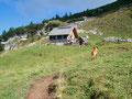Ein Hund kennt halt den anderen! Mittlerweile ließ er wieder von mir ab und wir wanderten unserem ersten Etappenziel entgegen.
