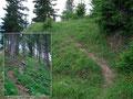 Während uns der erste Teil des Weges nicht ins Tal blicken ließ ...