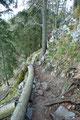 … über den Steig entlang des Kammes in südlicher Richtung.